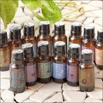 アロマフレグランスオイル14種の香り【aroma-oil】[アラムセンポール ALAM ZEMPOL]