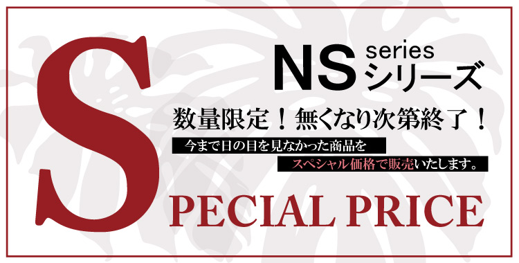 NSシリーズ
