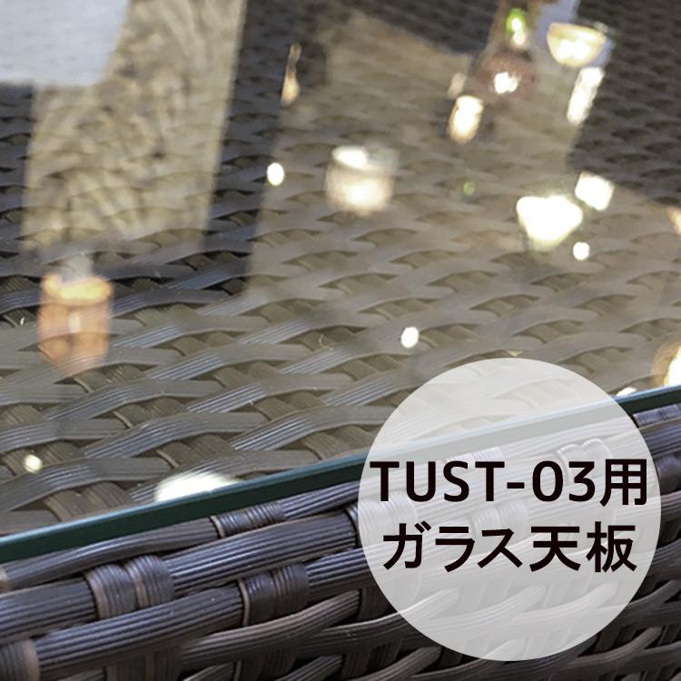 ラウンドローテーブル用天板ガラス[Tuban トゥバン] 【TUST-03-GL】