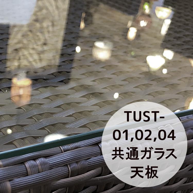 スクエアローテーブル共通天板ガラス[Tuban トゥバン] 【TUST-GL-40SQ】