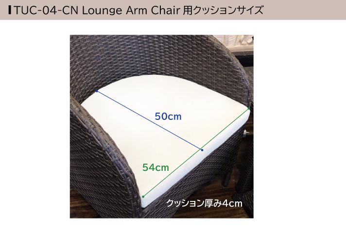 ラタンアームチェア[Tuban トゥバン] 【TUC-04-CN】