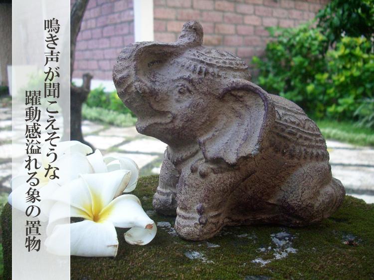 おねだりパオーン☆(45559)