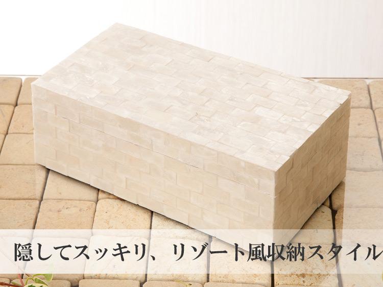 【50129】カピスシェルボック24