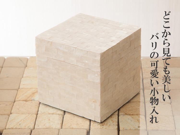 【50130】カピスシェルボック14