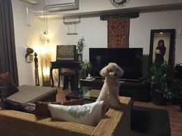 パーフェクトアジアンスタイルルーム