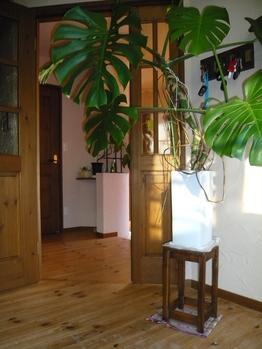 花台にもこだわった無垢材の温もりたっぷりのお部屋